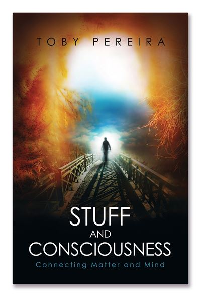 Stuff and Consciousness: Connecting Matter and Mind